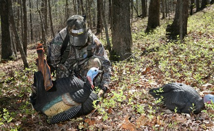 You might consider replacing the synthetic tails of your turkey decoy for a more realistic