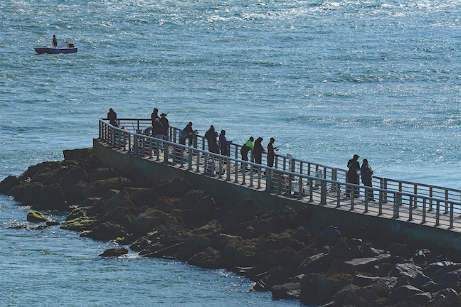 Tips For More Effective Pier-Fishing