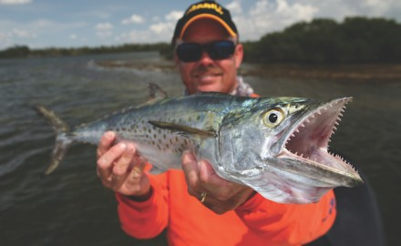 If you find birds swirling overhead, chances are Spanish mackerel are attacking baitfish schools.
