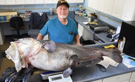 Florida angler Joel Singletary with the 120.35-pound blue catfish caught in the Choctawhatchee