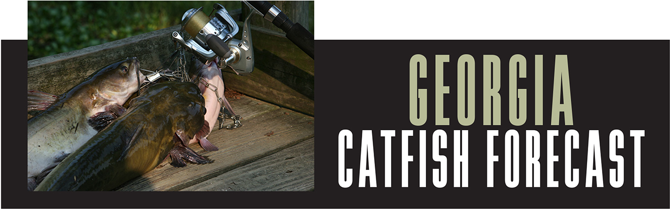 GA Catfish Forecast Banner