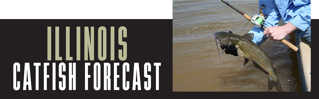 IL Catfish Forecast Banner