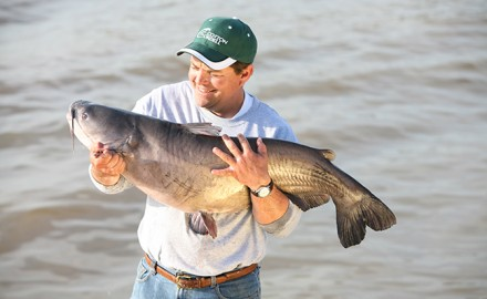 Summer is a great time to head in search of catfish, so it is good that the Bluegrass State has so