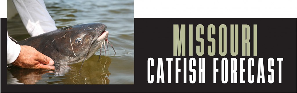 MO Catfish Forecast Banner