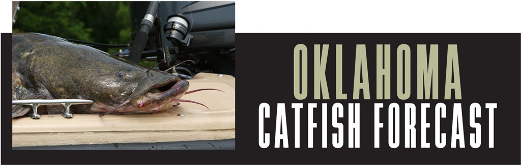 OK Catfish Forecast Banner