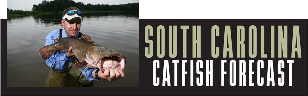 SC Catfish Forecast Banner