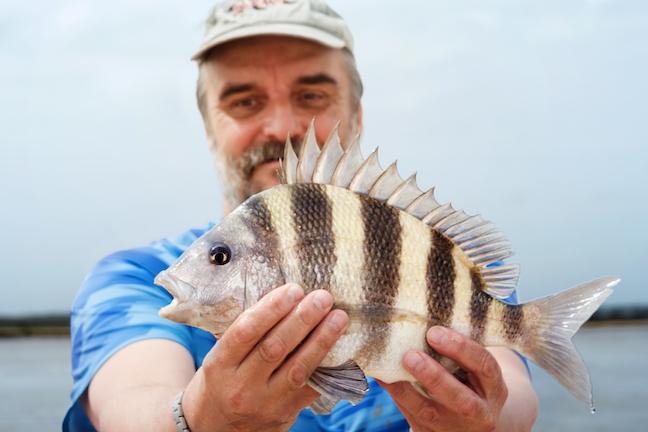 Great N C  Summer Saltwater Fishing Trips