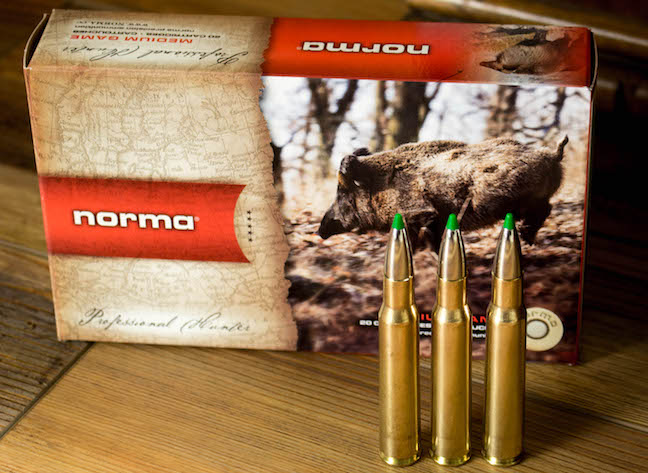 Best All-Around Hunting Rifle Cartridges for Medium to Large