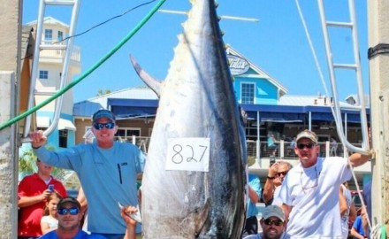 Rick Whitley and his Florida-record bluefin tuna, along with Capt. Joey Birbeck and mates Dennis