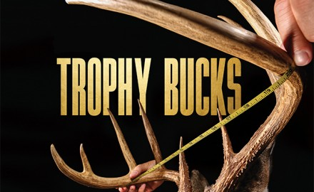 trophy bucks