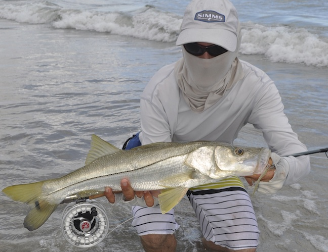 snook in the surf
