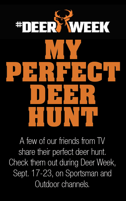 my perfect deer hunt
