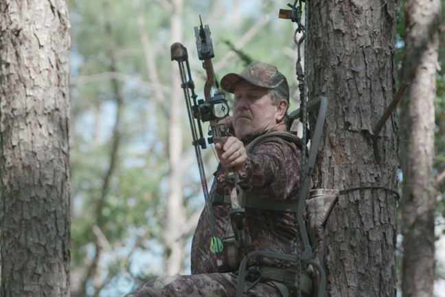 Treestand safety 39 i never dreamed i would fall 39 game fish for Ohio game fishing