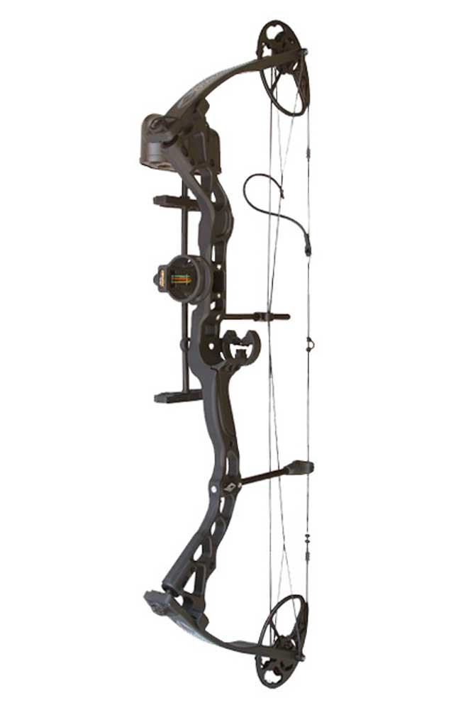 //www.gameandfishmag.com/files/30-compound-bows-for-2014-the-beauties-and-the-bargains/diamond-infinite-edge.jpg