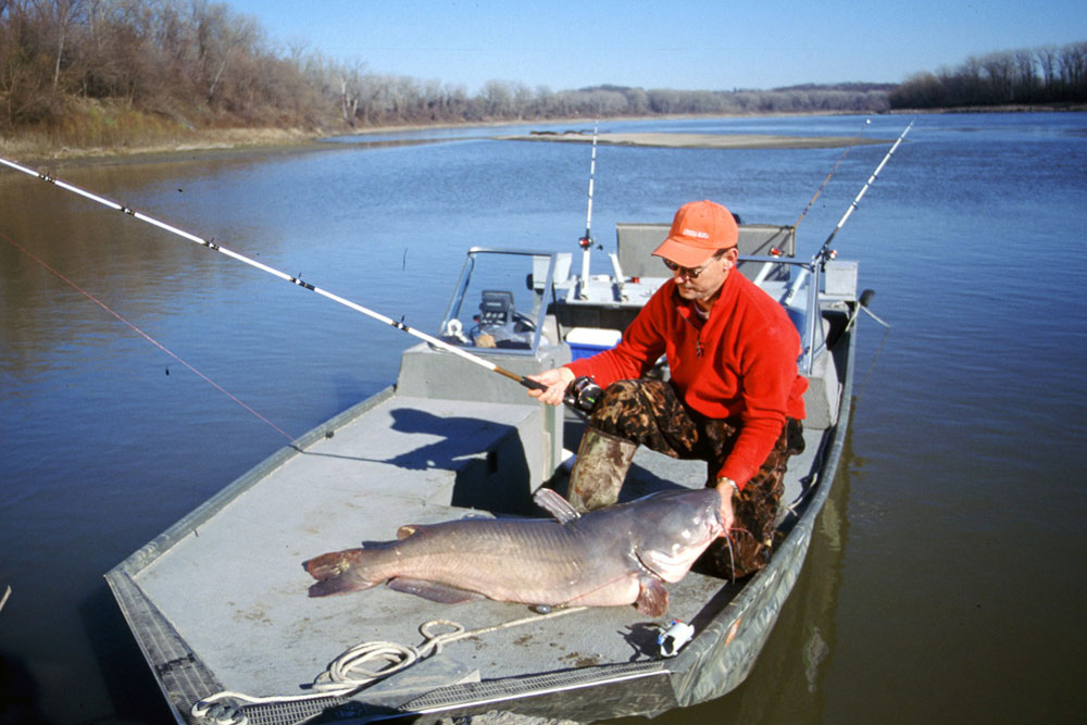 //www.gameandfishmag.com/files/8-reasons-youre-not-catching-trophy-catfish/reason_not_catching_007.jpg