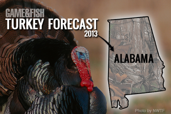 //www.gameandfishmag.com/files/gf-turkey-forecast-2013/alabama-turkey-hunting-2013-sidebar.jpg