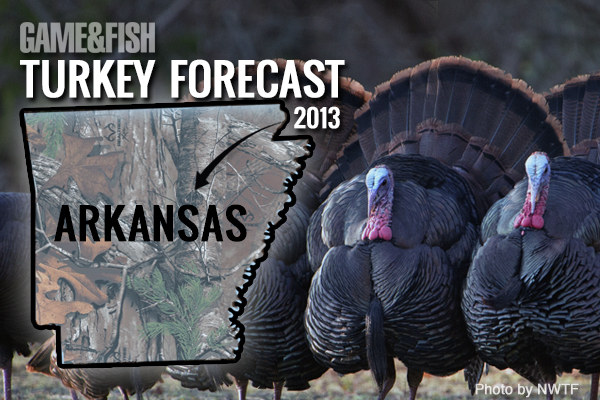 //www.gameandfishmag.com/files/gf-turkey-forecast-2013/arkansas-feat-img.jpg
