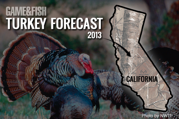 //www.gameandfishmag.com/files/gf-turkey-forecast-2013/california-feat-img.jpg