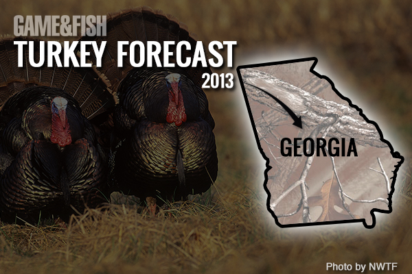 //www.gameandfishmag.com/files/gf-turkey-forecast-2013/georgia-feat-img.jpg