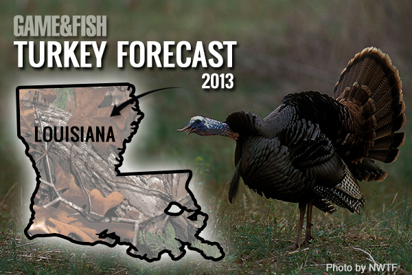 //www.gameandfishmag.com/files/gf-turkey-forecast-2013/louisiana-feat-img.jpg