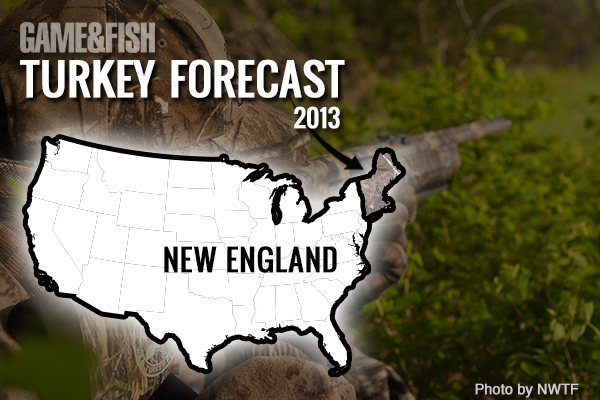 //www.gameandfishmag.com/files/gf-turkey-forecast-2013/new-england-feat-img.jpg