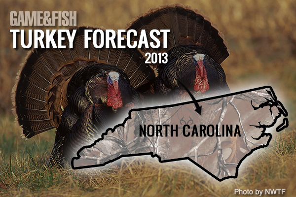 //www.gameandfishmag.com/files/gf-turkey-forecast-2013/north-carolina-feat-img.jpg