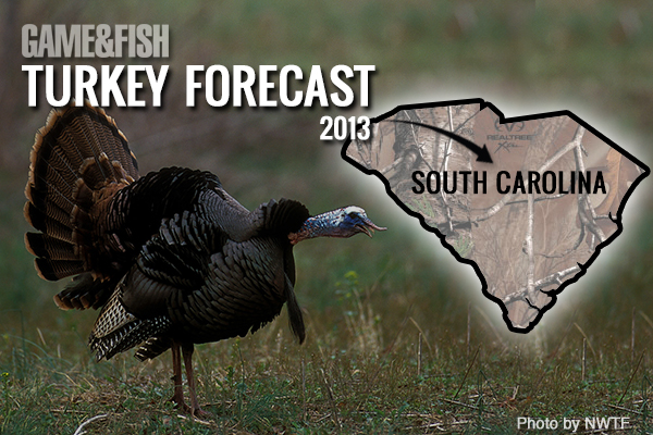 //www.gameandfishmag.com/files/gf-turkey-forecast-2013/south-carolina-feat-img.jpg