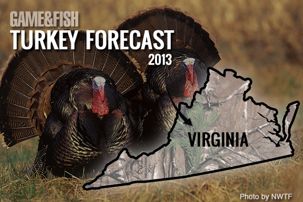 //www.gameandfishmag.com/files/gf-turkey-forecast-2013/virginia-feat-img.jpg