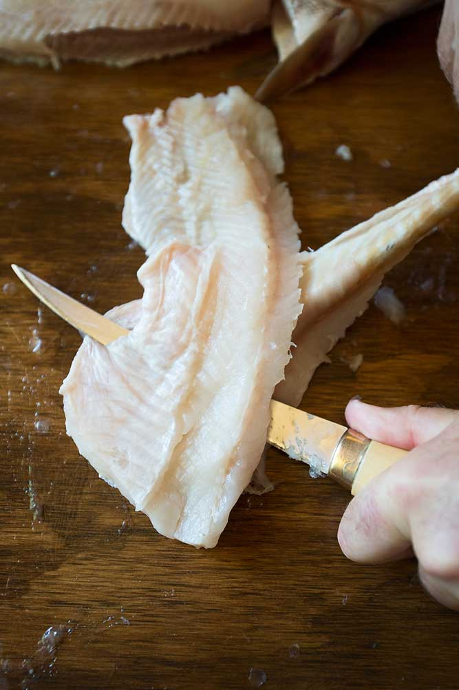 //www.gameandfishmag.com/files/how-to-fillet-a-pike/skinning-meat-lg.jpg