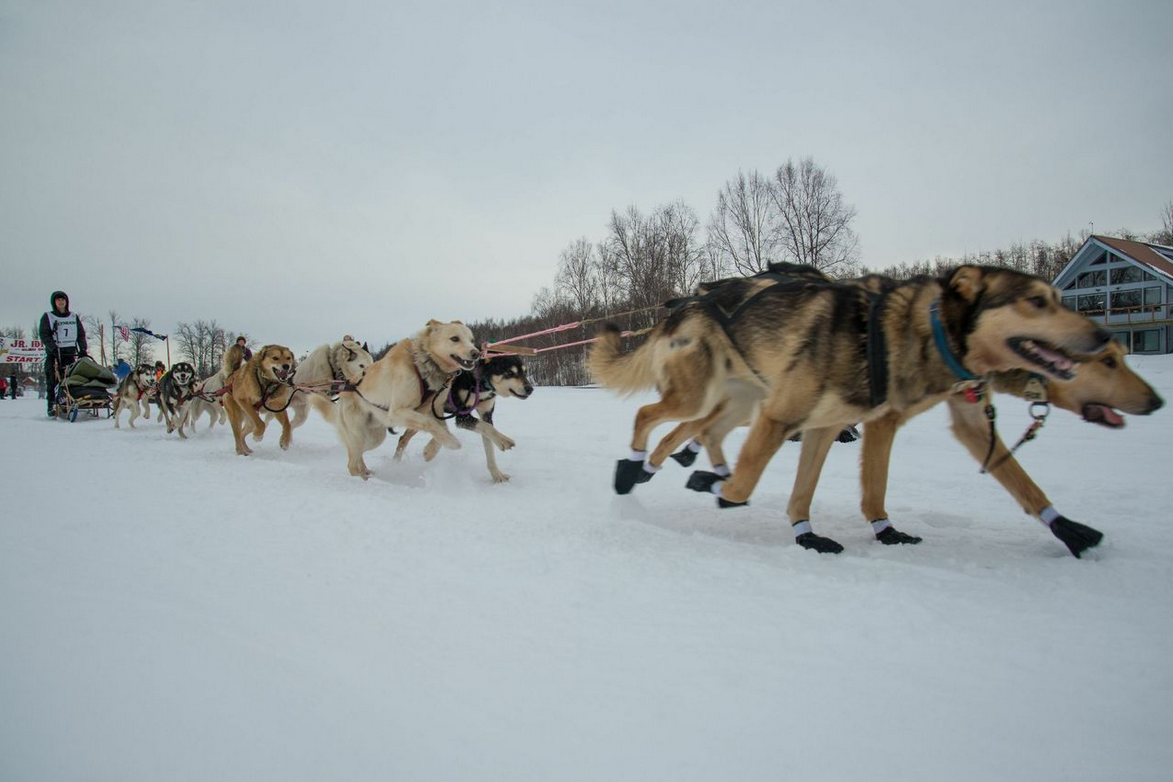 //www.gameandfishmag.com/files/iditarod-start-to-finish/jr-coolangle.png