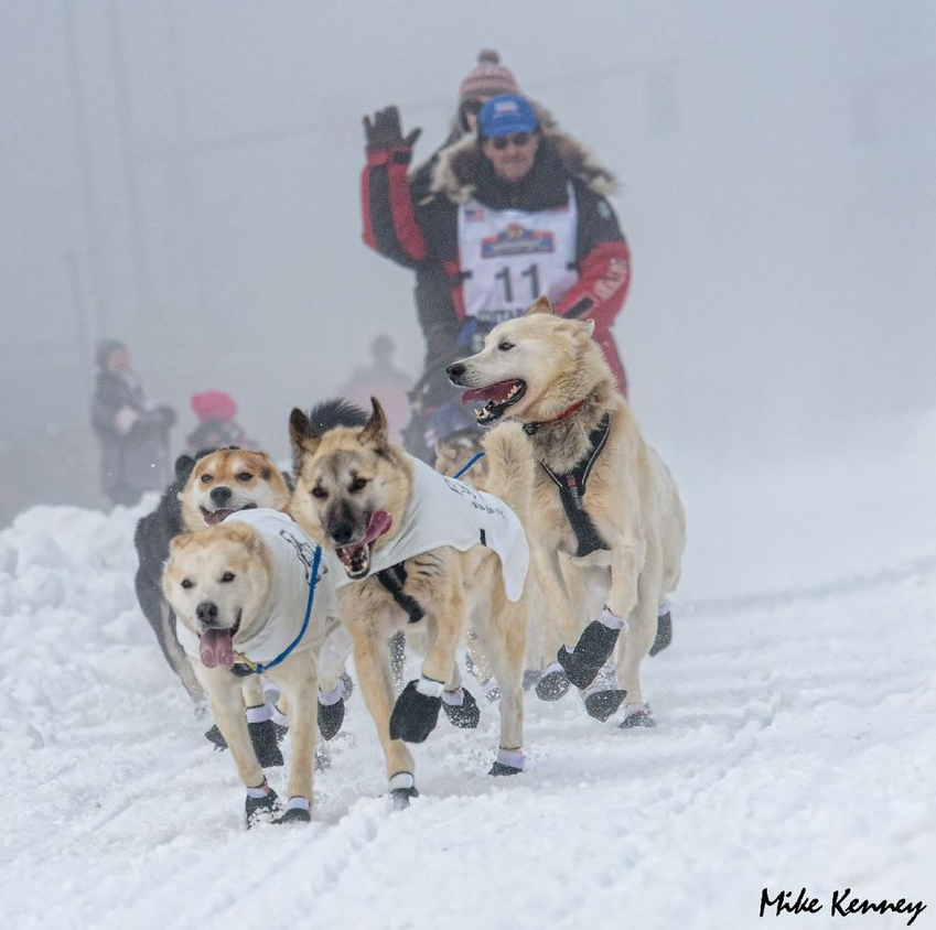//www.gameandfishmag.com/files/iditarod-start-to-finish/race-start.png