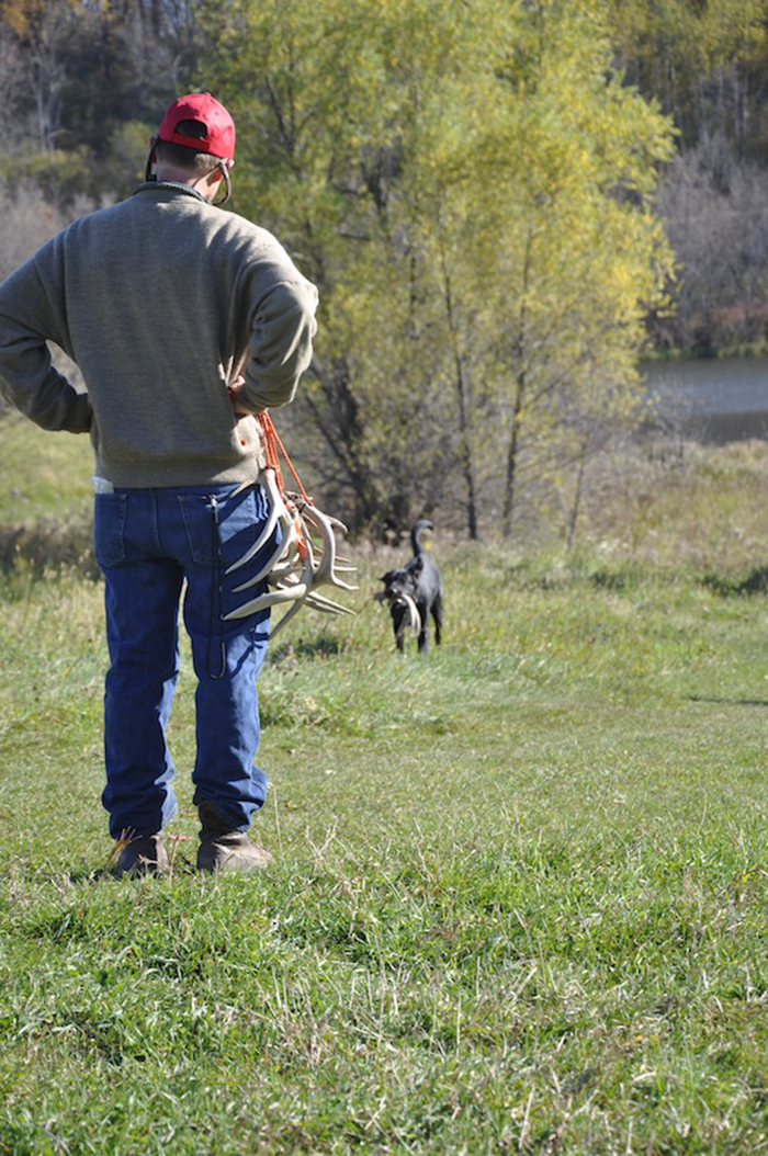 //www.gameandfishmag.com/files/sheds-why-your-dog-will-out-hunt-you/8-skills.jpg