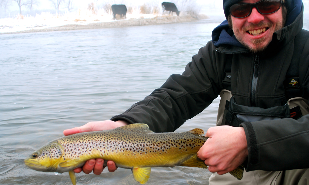 //www.gameandfishmag.com/files/top-ten-trout-trips-in-america/trout-slide-10.jpg
