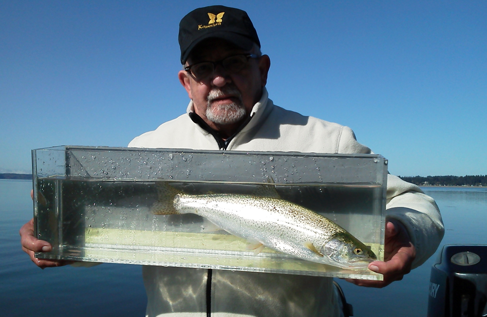 //www.gameandfishmag.com/files/top-ten-trout-trips-in-america/trout-slide-6.jpg