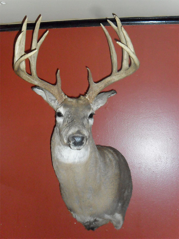 //www.gameandfishmag.com/files/trophy-bucks-of-the-south/terry-calhoon.jpg
