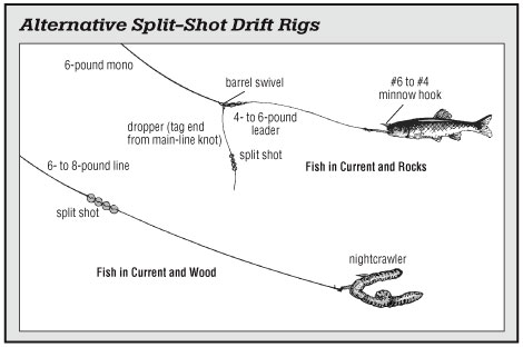 Presenting Natural Baits       Rigging is technically the terminal setup for any kind