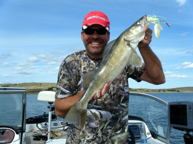 Trolling bass-style spinnerbaits for walleye