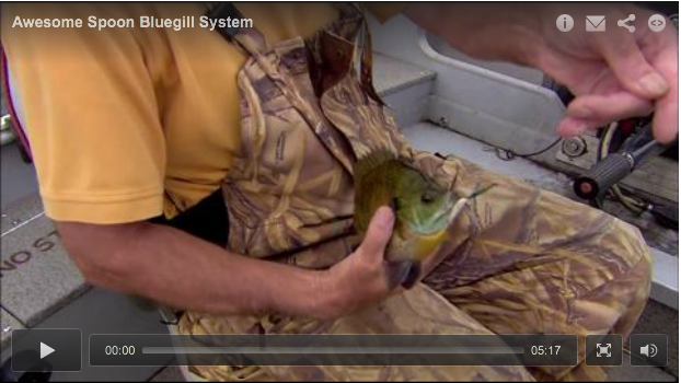 Awesome Bluegill Spoon System!
