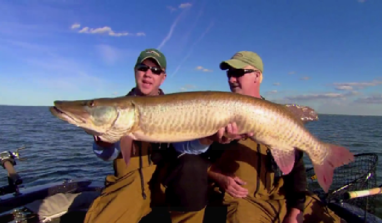 Trolling Muskies Produces Giants!