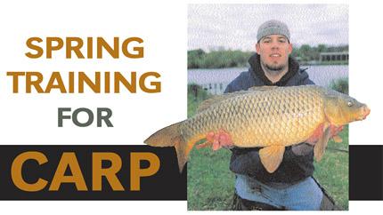 Catching Carp During Spring