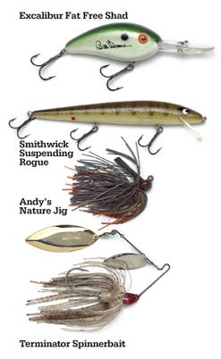 Winter Reservoir Smallmouth Bass