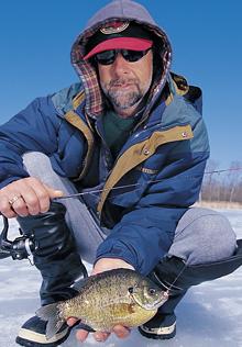 Ice Fishing Bluegills Near Weeds