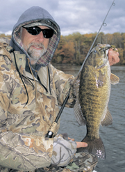 Winter Smallmouth Bass In Rivers