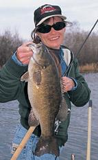 Livebait Smallmouth Bass North & South