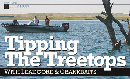 Snagless: Tipping The Treetops
