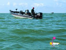 Strategies For Open Water Walleyes