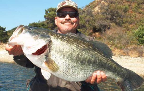 Catching Lunker Bass With Nightcrawlers