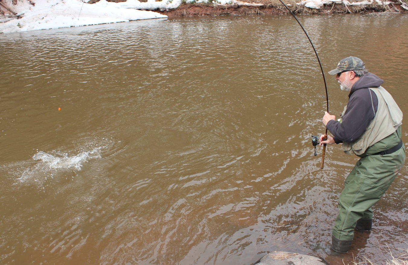 Dancing With The Chocolate Beast  (High Water In Steelhead Country)