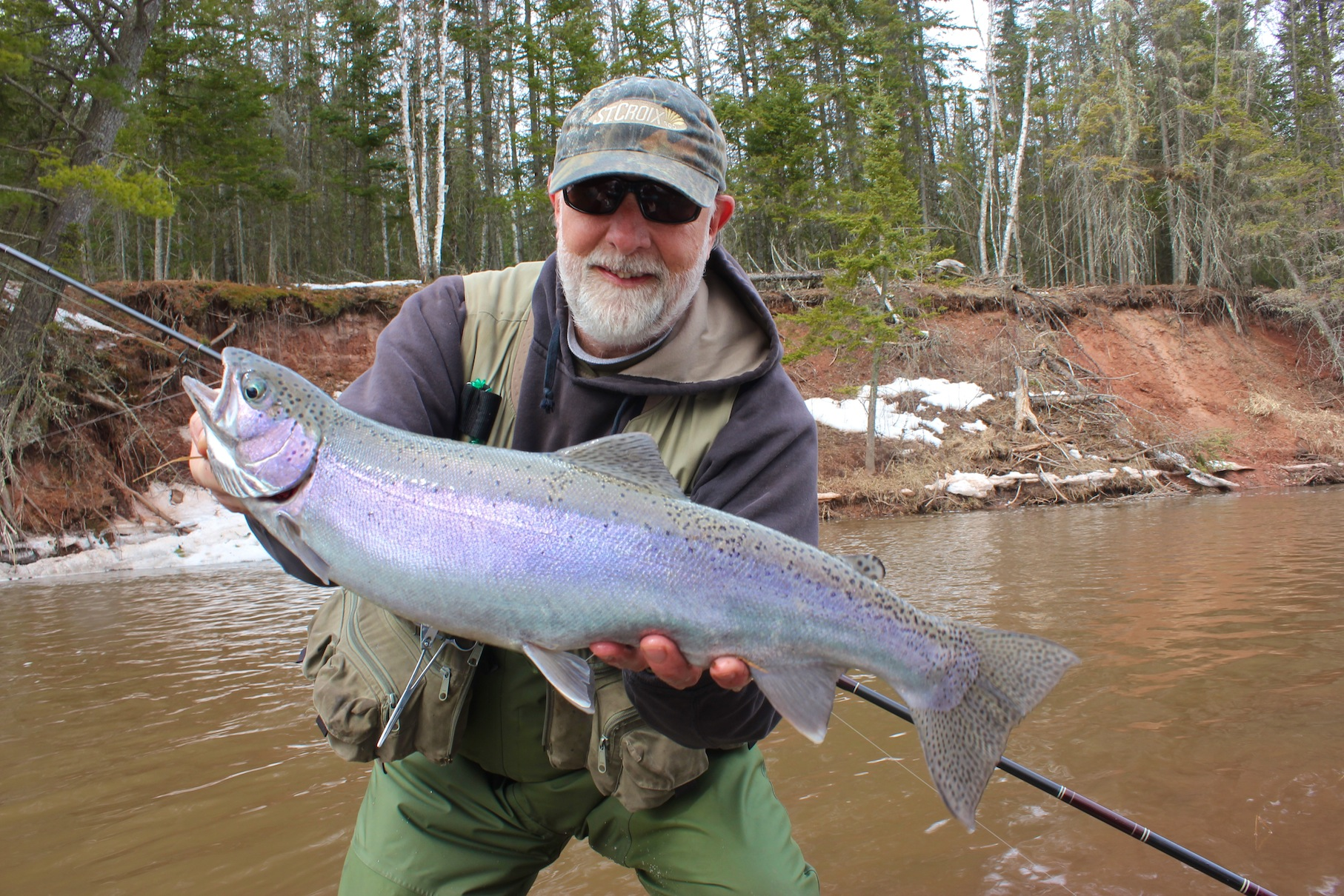 Steelhead And That Color Thing
