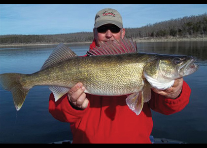 State of the (Walleye) Union: Our Best Walleye States